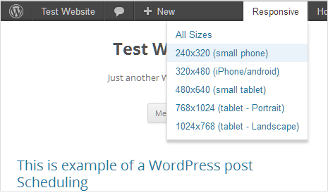 Responsive check for localhost wordpress