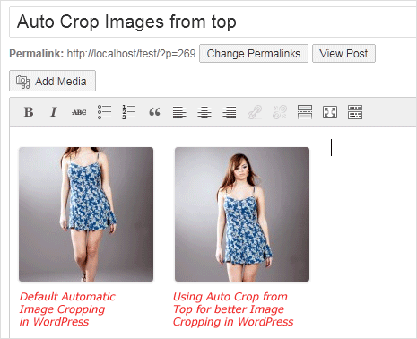 auto image cropping from top direction in wordpress