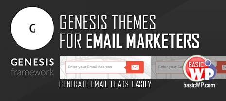 best genesis themes for email marketing leads
