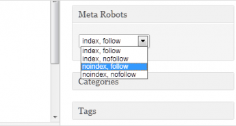 robots meta setting wordpress plugin